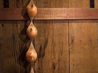cara menyimpan bawang bombay , cara menyimpan bawang merah , cara menyimpan bawang putih , cara menyimpan bawang dalam stocking , cara menyimpan bawang dalam kulkas , cara menyimpan bawang dalam plastik