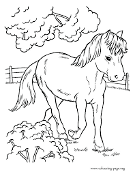Cute Pony Coloring Pages For Kids Download