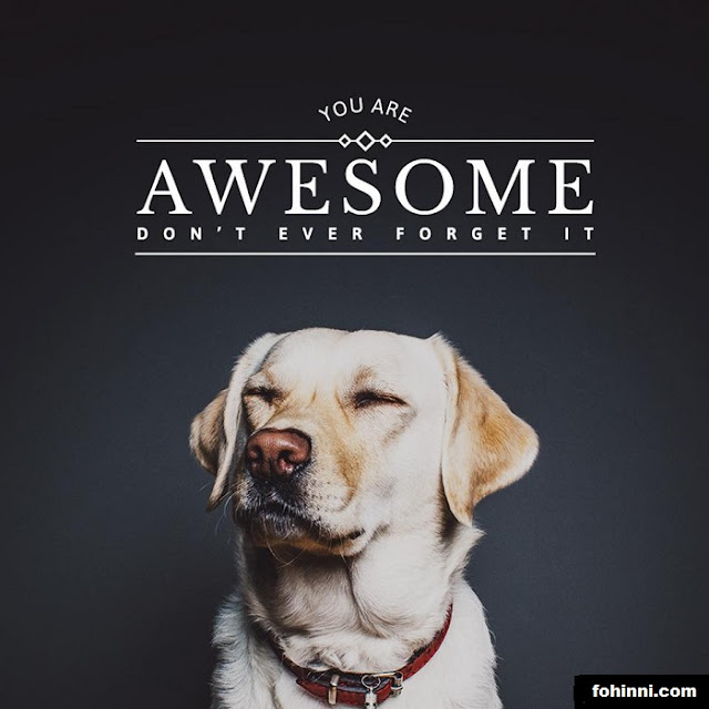You are AWESOME, don't ever forget it. It will help you to progress and move forward.