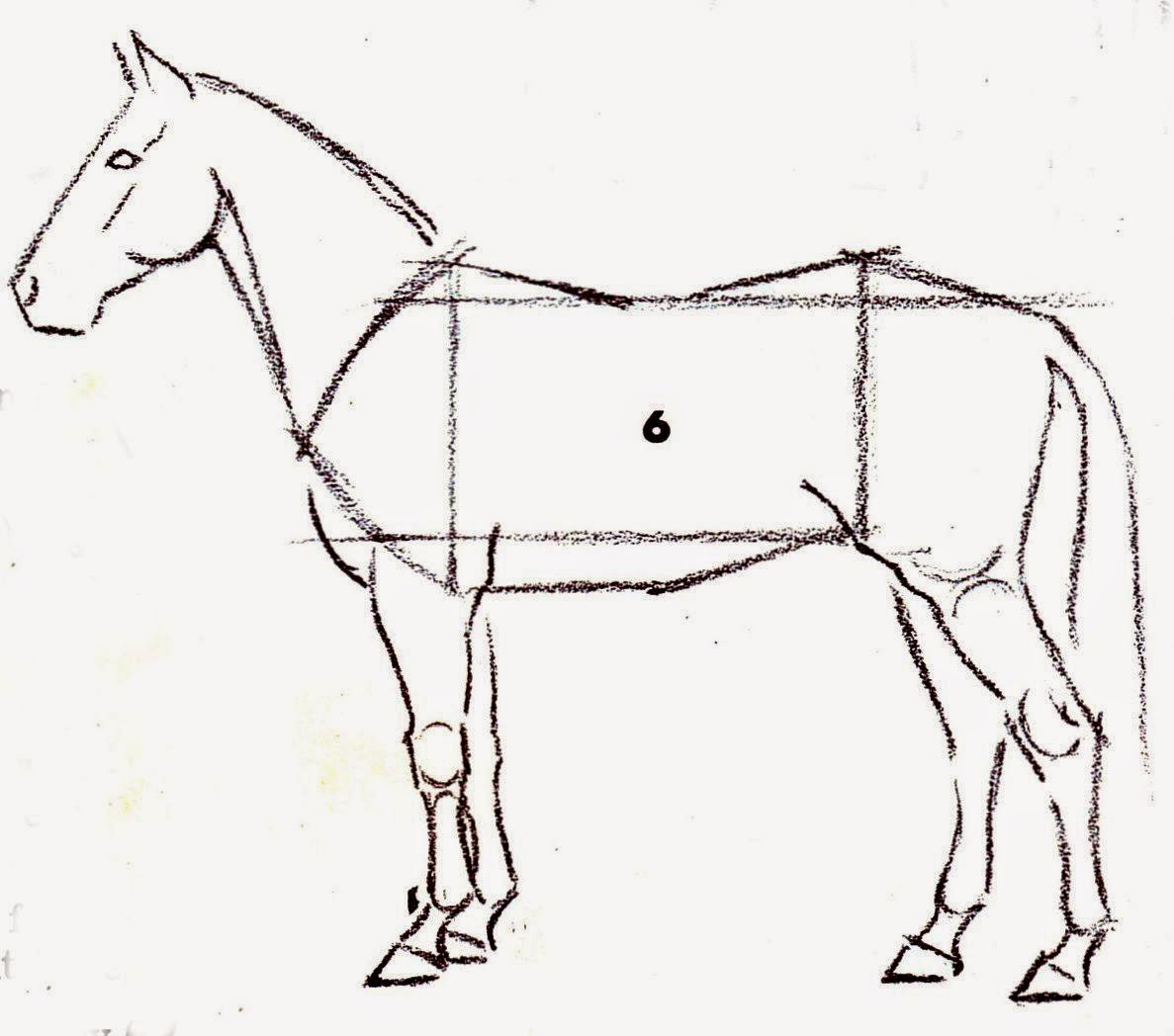 6 easy step to draw a horse in painting tips for Drawing ideas for beginners step by step