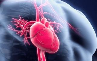 Contoh Makalah Tentang Menjaga Kesehatan Jantung