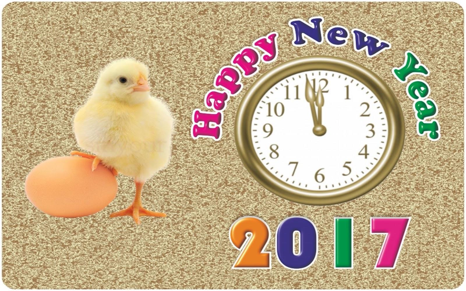 Funny New Year 2017 Whatsapp Status Updatesmsg