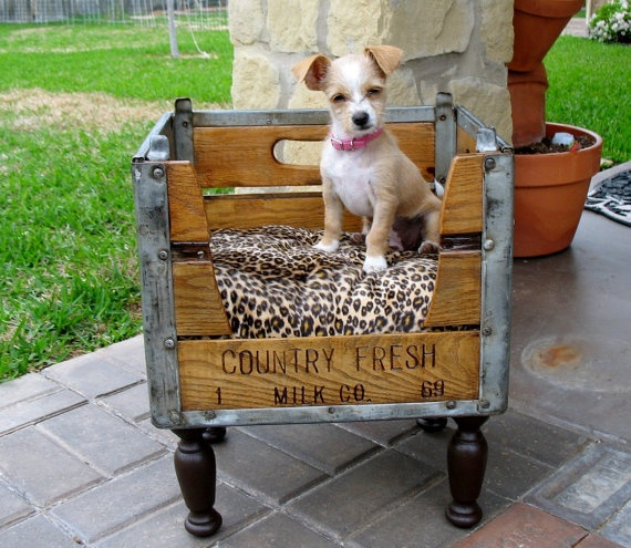 This upcycled milk crate makes for the perfect resting place for your furry friend