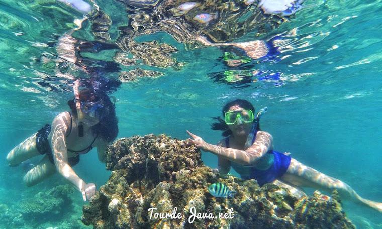 aktivitas snorkeling menjadi penyegar setelah letih wisata di ujung kulon