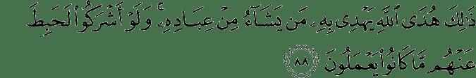 Surat Al-An'am Ayat 88