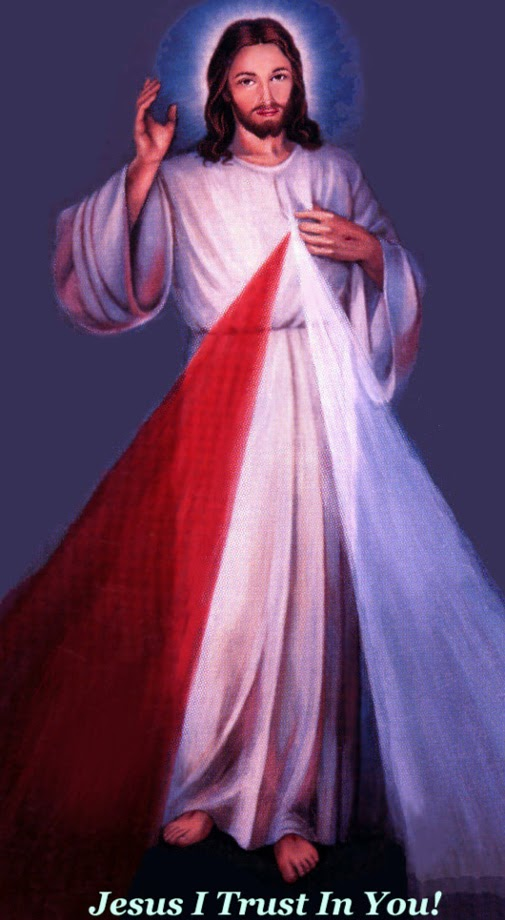 Lower Your Nets: Touch Jesus' Divine Mercy