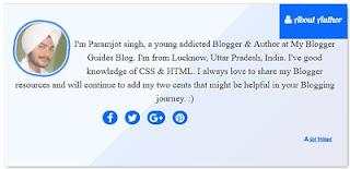 Admin box for blogger, author box for blogger, below posts about admin box, below posts about author box