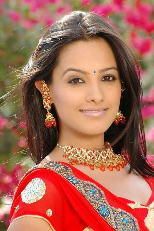 Anita Hassanandani :Biography, Photos, HD Wallpapers ...