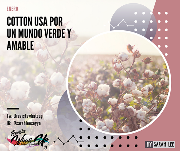 Cotton-USA-mundo-verde-amable