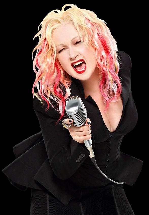 http://www.vegasnews.com/110137/cher-to-be-joined-by-special-guest-cyndi-lauper-in-dressed-to-kill-tour.html