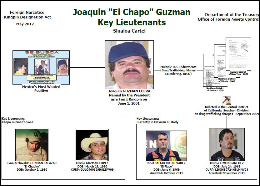 Mexico: Chapo's Son Captured - Bodybuilding com Forums