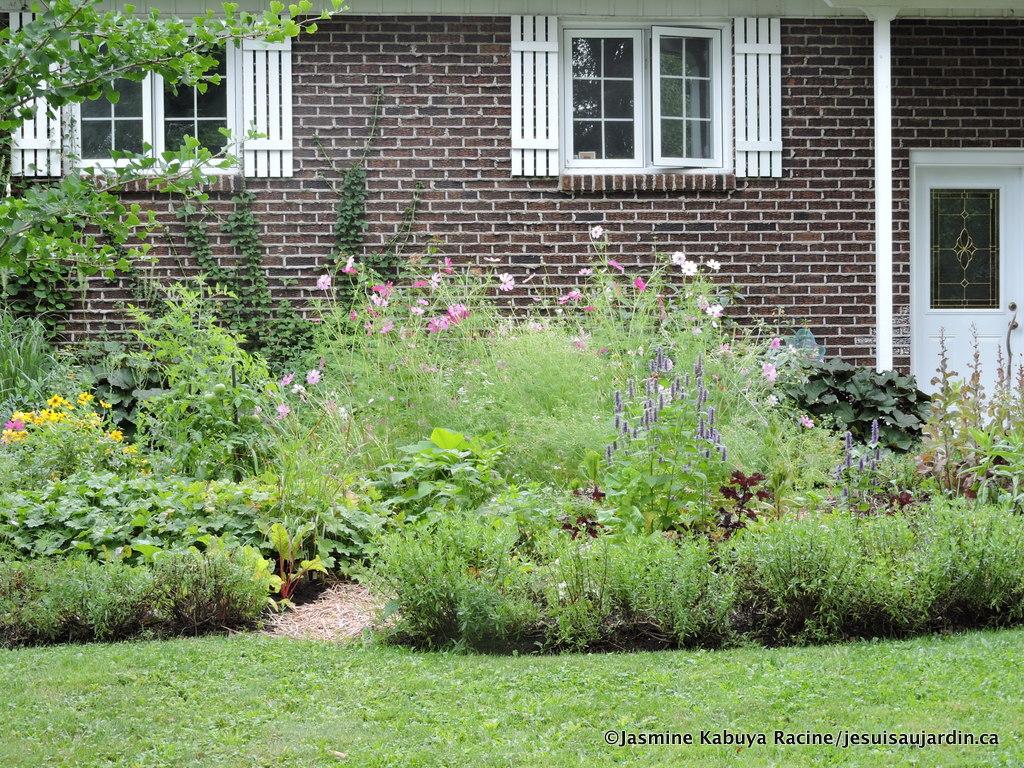 separation jardin bois