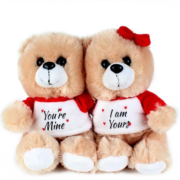 Sweet Teddy Bear Couples
