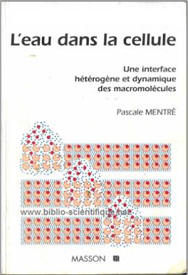 L'eau dans la cellule, Une interface hétérogène et dynamique des macromolécules - Pascale Mentré