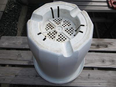 古い鉢 底