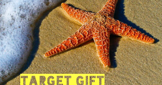July Target Gift Card Giveaway