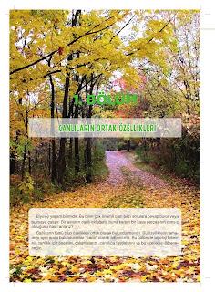 9. Sınıf Biyoloji Ders Kitabı Cevapları Netbil Yayınları Sayfa 14