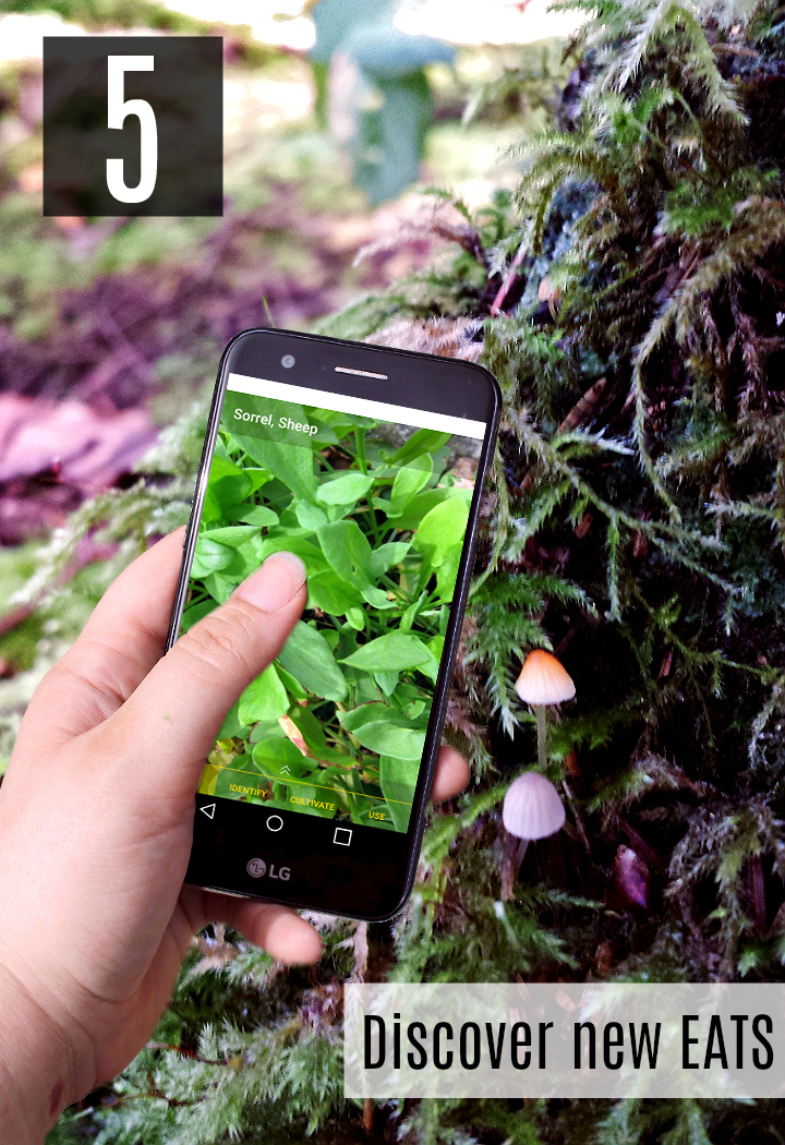 Don't just use your smartphone to read reviews on local restaurants, track star maps and even identify edible mushrooms and plants while forraging this Summer! #SummerIsForSavings #WFM1 #AD