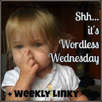 http://www.nannytomommy.com/2015/06/summer-fun-wordless-wednesday-linky.html