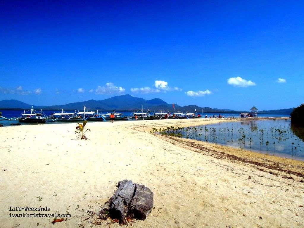 Honda Bay Island Hopping Tour white sands of Starfish Island