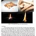 Nghiên cứu sản xuất viên nhiên liệu từ biomass - RESEARCH  MANUFACTURE OF PELLET FROM BIOMASS