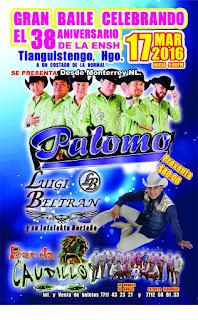 Presentaciones Grupo Palomo en 2016