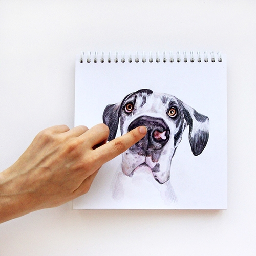 03-Boop-Valerie-Susik-Валерия-Суслопарова-Cats-and-Dogs-Interactive-Animal-Drawings-www-designstack-co