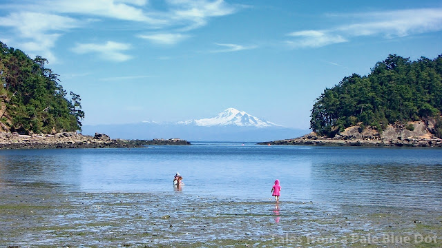 Mt Baker seen from Mayne Island...