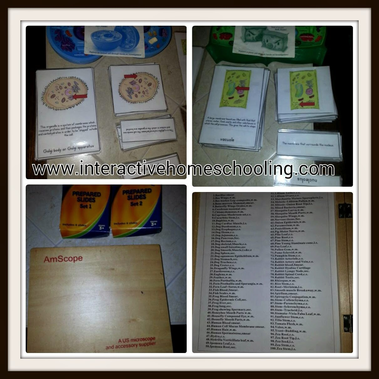 Interactive Homeschooling Cells Unit Study Weeks 2 And 3