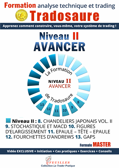 ANALYSE TECHNIQUE FORMATION TRADOSAURE NIVEAU II
