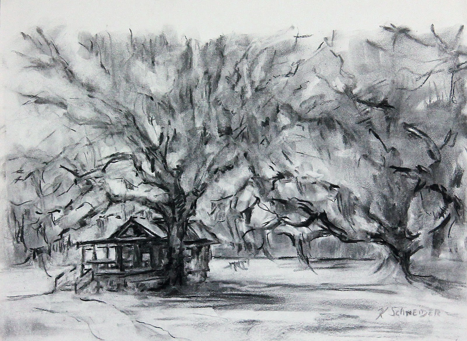 Paint charleston daily charcoal drawings works in progress