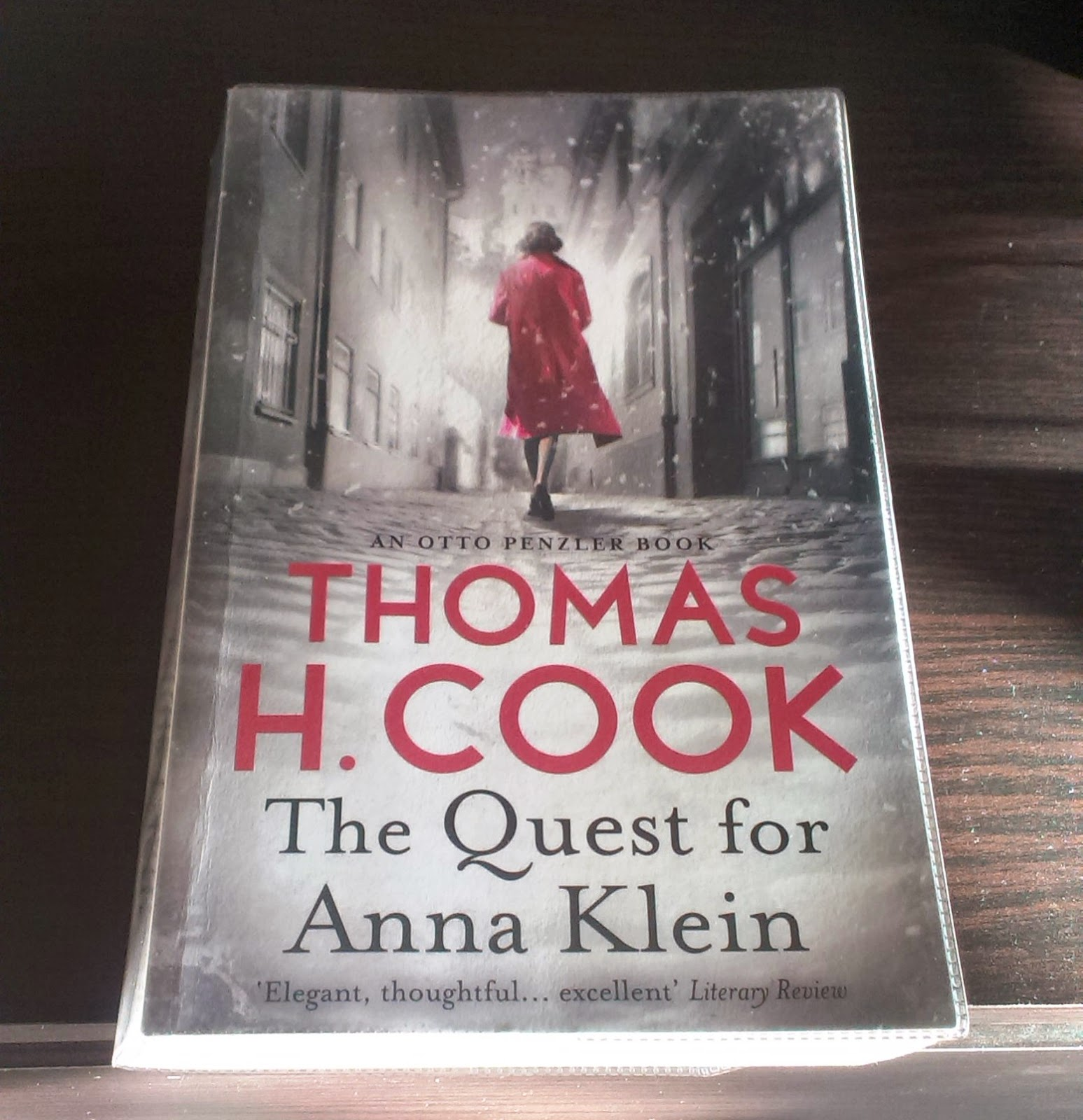 Thomas H Cook - The Quest for Ann Klein