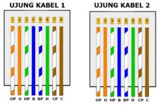 Cara Pemasangan Kabel UTP Model Straight Trough