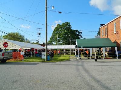 Festival grounds at the Testicle Festival