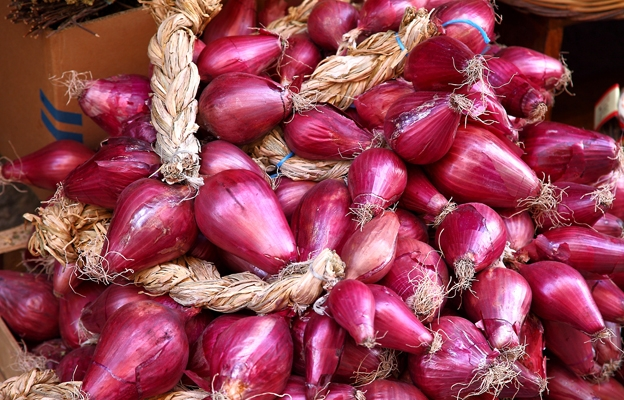 The Sweet Red onion of Tropea