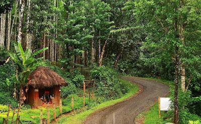 Agumbe, Shimoga