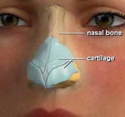 Best nose surgery nose hump reduction nose shape change in Kolkata India