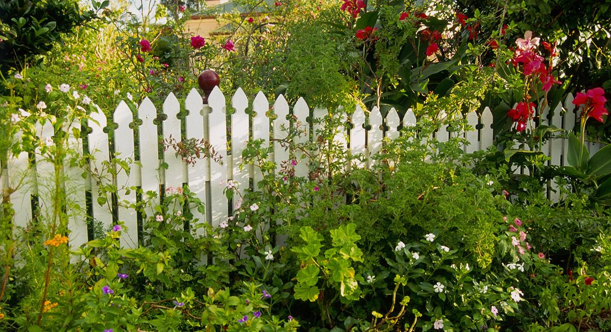 Dep sito santa mariah jardim feito com amor for Garden design visualiser