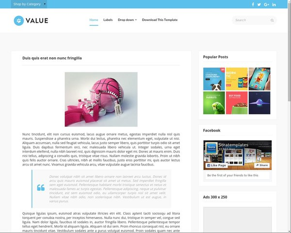 Store Blogger Template