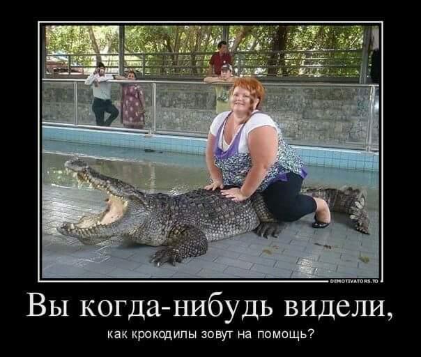 Крокодил зовет на помощь