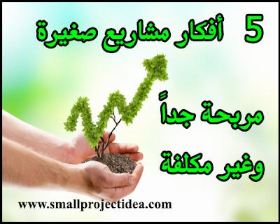 5 افكار مشاريع صغيرة مربحة جدا وغير مكلفة