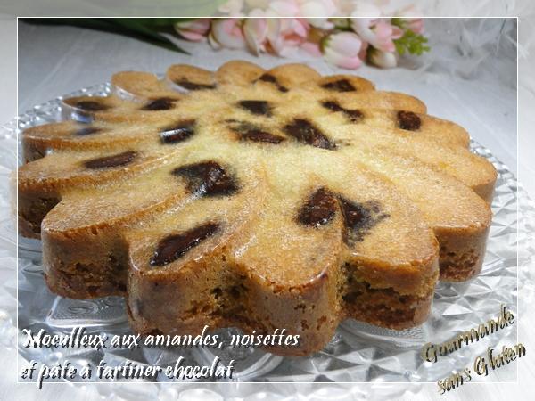 Moelleux aux amandes, noisettes et délice à tartiner chocolat noisettes de Chef de France