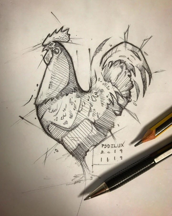 11-Rooster-Psdelux-Animal-Drawings-www-designstack-co