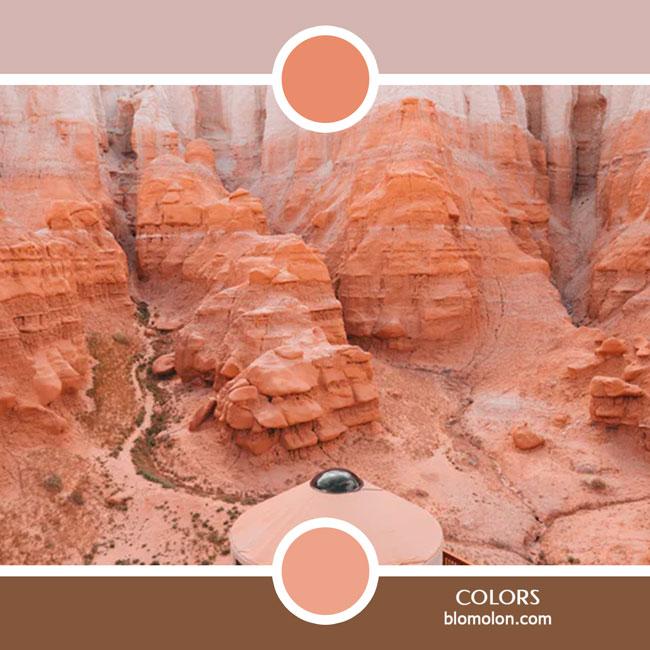 variedad_en_color_color_76