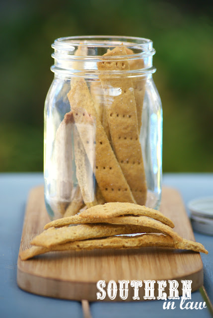 Easy Vegan Three Ingredient Homemade Crackers Recipe - gluten free, grain free, healthy, vegan, nut free, egg free, dairy free,