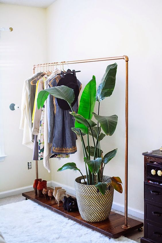 As In This Example Plants And Clothes Go Very Well Together And The Whole  Deco Arrangement Has A Seventies Vibe And Looks Very Exotic.