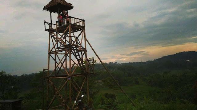 Lokasi Agrowisata Pengkol Van Java Menjangan Subah
