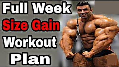 full week size gain and muscle size gain workout in Hindi ,body kaise banaye