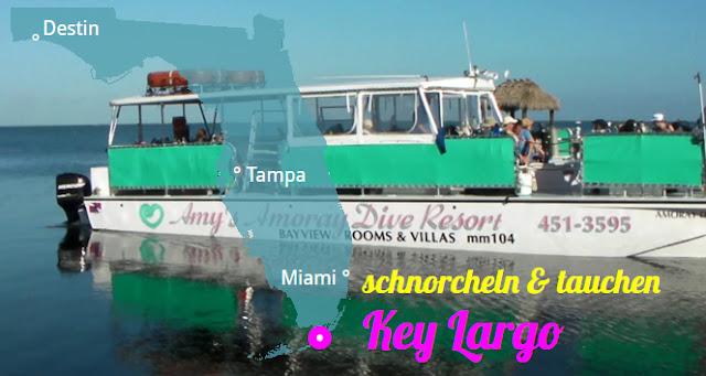 Schnorchln und Tauchen in Key Largo