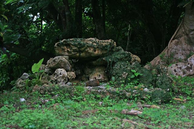 新里ノ殿(イビの森)の写真